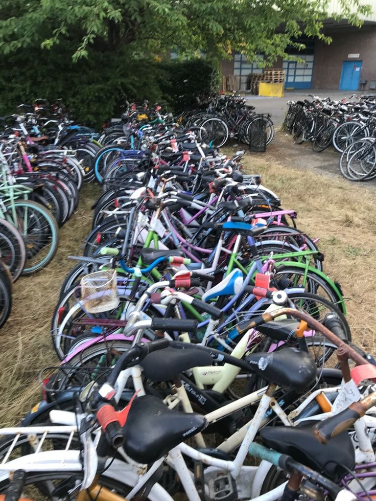 33446 - Bicycles for sale Europe